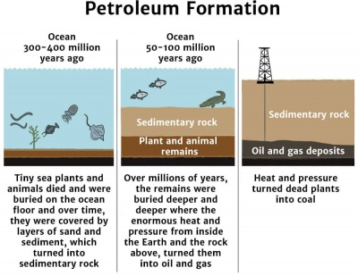 Petroleum Formation Diagram