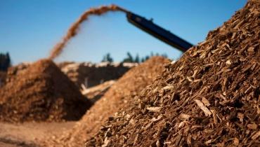 Cosecha de biomasa